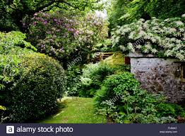an shady outbuilding with roof covered by a climbing plant at