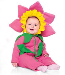 Flower Baby Halloween Costume 49 Baby Halloween Costumes Images Costumes