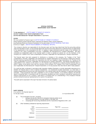 treasurer s report agm template treasurer report template beautiful audit report sles sales