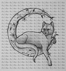 collection of 25 black cat moon design