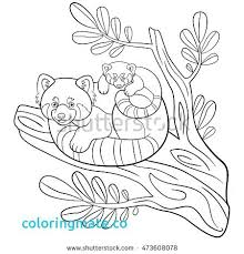 Coloriages Webkinz Red Panda Coloring Page Inspirational Stock