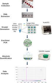 a droplet digital pcr method for severe combined immunodeficiency