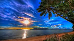 beach silent moment sunrise coconut trees cool reflection light