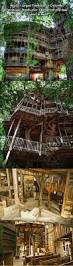 Amazing Tree Houses by Best 25 Tree House Masters Ideas On Pinterest Rustic Window