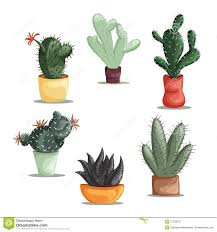 colorful illustration of succulent plants and cactuses in pots