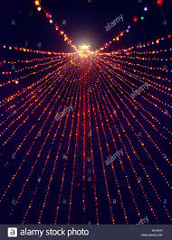 austin christmas tree christmas lights decoration