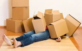 first appartment do s and don ts for moving into your first apartment rent com blog