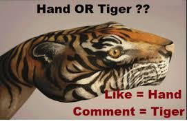 Funny Tiger Memes - hand or tiger kehand comment tiger meme on esmemes com