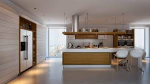 Kitchen Cabinet Shelves by Spectacular Wood Kitchen Cabinet Shelves With Side By Side