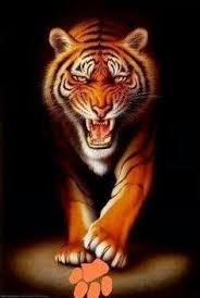 clemson tiger paw tattoos clemson tiger paw and