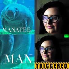 Manatee Meme - the best manatee memes memedroid