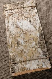 birch tree wrapping paper 564 best birch images on birch bark birches and birch