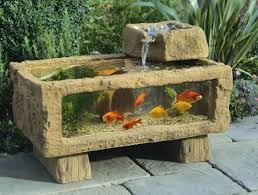 431 best fish tank and ponds images on fish tanks