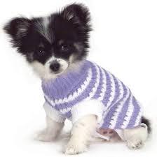 pet sweaters stripe knit pet sweaters 28 jeffers pet