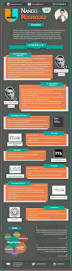 Infographic Resume Creator by 339 Best Infographic And Visual Resumes Images On Pinterest