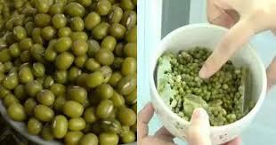 cara membuat bubur kacang ijo empuk tips merebus kacang hijau agar cepat empuk tak pakai lama cukup