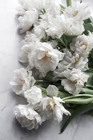 1112 best f l o w e r s images on pinterest flowers floral
