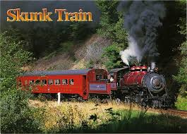 California travel by train images 20 best skunk train images skunks fort bragg and jpg