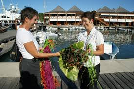 How Much Does A Waitress Make A Year by Official Yacht Stewardess Job Descriptions And Salaries Including