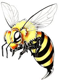 posted image bee wasp hornet pinterest tattoo tatoo and