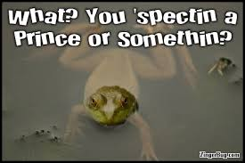 Funny Frog Meme - expecting a prince funny frog quote glitter graphic greeting