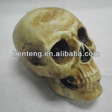wholesale skull wholesale skull suppliers and