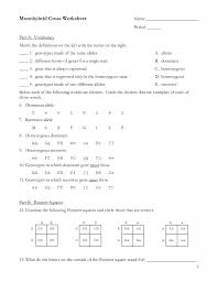 genetic crosses worksheet answer key phoenixpayday com