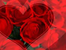 send roses robert i won t send roses