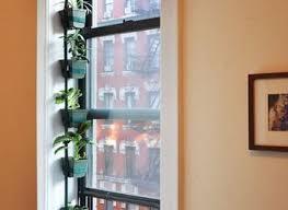 kitchen window garden sustainablepals org