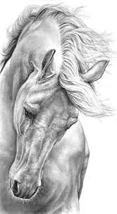 the 25 best pencil drawings ideas on pinterest pencil art