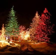 christmas tree lights deals christmas tree lighting ideas best 40 outdoor christmas lighting