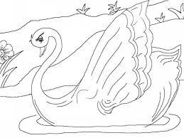 ugly duckling coloring pages businesswebsitestarter com
