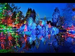 Vandusen Botanical Garden Lights Show Festival Of Lights Vandusen Botanical Garden