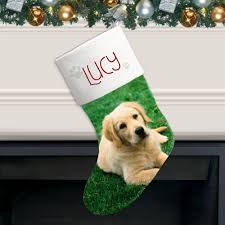 prints personalized photo christmas stocking for pets