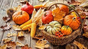 diy thanksgiving decorations cbs detroit