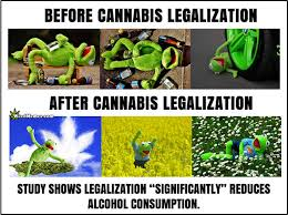 Weed Memes - cannabis legalization reduces alcohol consumption marijuana is safer