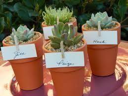 Flower Pot Wedding Favors - succulent wedding favor succulent bridal shower favor by tobieanne