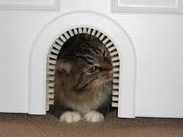 amazon com cat door the original cathole interior pet door