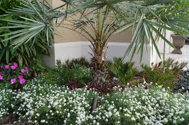 Florida Landscaping Ideas by Brevard County Lawn Maintenance Services Melbourne Florida