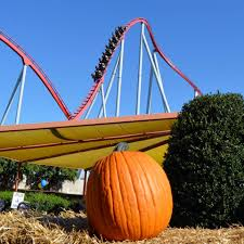 spirit halloween charlotte nc carowinds home facebook