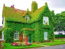 Vertical Garden Ideas 25 Mesmerizing Vertical Garden Ideas That Will Refresh Your Decor