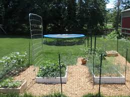 how does your square foot garden grow