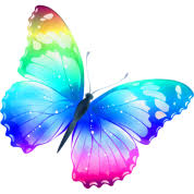butterfly rainbow one spreadshirt