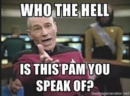 What The Hell Is A Meme - pam is a meme google search parodies of my life whoa my