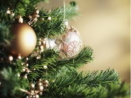 Christmas Tree Pick Up Lansdale Christmas Tree Pickup Is Jan 10 Montgomeryville Pa Patch