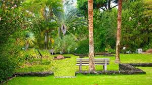 Kona Botanical Gardens Visit Seymour Botanical Garden In Kailua Kona Expedia