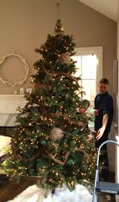 a pottery barn tree with all the trimmings