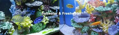 Artificial Coral Reef Aquarium Decorations for Saltwater Fish Tanks