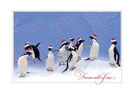 pumpernickel press wildlife cards animal christmas cards wildlife cards