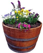 Half Barrel Planter by Alert Amazing Deals On Barrel Planters